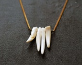 20% off - no. 101 - white coral fangs on vintage brass chain