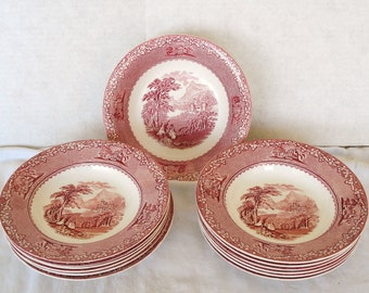 Vintage ROYAL Staffordshire JENNY LIND Dinnerware 13 Pieces.