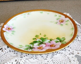 Vintage THOMAS SEVRES Bavaria Hand Painted Plate.