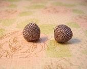Sea Shells Earring, Shells Earring, Sea Earrings, Sea Shells Jewelry, Sea Jewelry, Shells Jewelry
