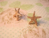 Sea Star Earring, Button Earrings, Seashell Stud
