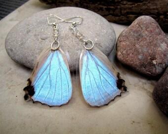 Morpho Sulkowski Butterfly Earrings, Mother of Pearl Butterfly