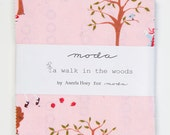 A Walk in the Woods by Aneela Hoey for Moda, charm pack
