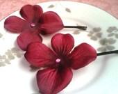 Burgundy red hydrangea bobbies ... rich, romantic blossoms