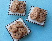 Magnet: Chocolate Chip Cookies