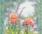 Iris and Foxgloves Floral 8.5 x 11 Giclee Fine Art Print Signed Elizabeth Ruffing
