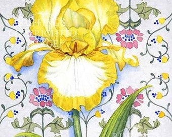 Yellow and White Iris Floral, Art Nouveau Wallpaper Pattern Giclee Fine Art Print, Signed Elizabeth Ruffing, on 8.5 x 11 inch art paper