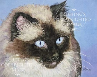 Ragdoll Cat on Blue 8.5 x 11 Giclee Fine Art Print Signed A E Ruffing