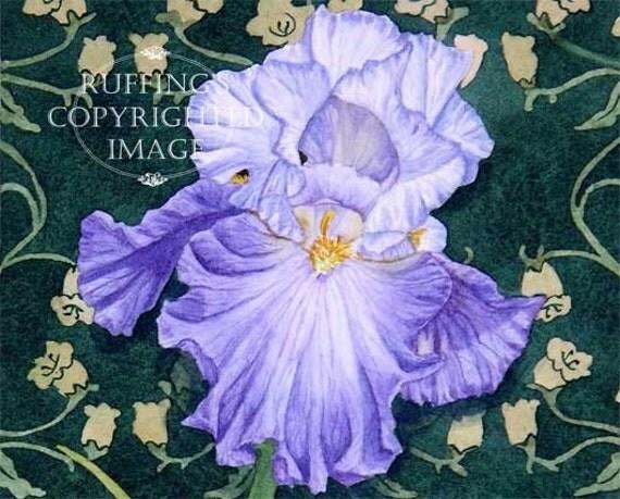 Lavender-blue Iris Floral, Art Nouveau, Green Wallpaper Pattern Giclee Fine Art Print, Signed Elizabeth Ruffing, on 8.5 x 11 inch art paper