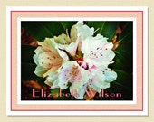 Rhododendrons - Old World Beauty - Personalized Note Cards (10 Folded)