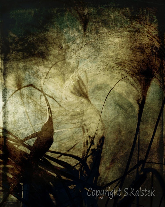 Abstract Nature Photograph Dreamy Warm Brown Blue Tones Wispy Grass Surreal Nature Art 8x10