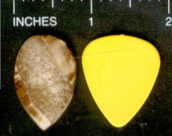 Handcrafted Alaska Ivory Guitar Pick - Oval Teardrop