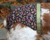 Paisley Spankie (dog diaper)
