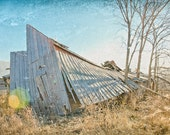 Distressed Abandoned Leaning Barn in Cornfield Rural Wall Art - Photograph with white border