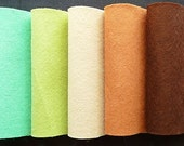 Felt, 6 pack of 9 x 12 sheets, Kayak