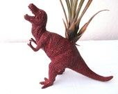 Dinosaur Maroon T-Rex Planter for Air Plants and Succulents