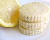 Sweet Summertime Shortbread Cookies Citrus Sampler Tin - Cookie Gift - 1 Dozen