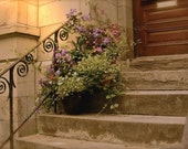 The Steps Home, home sweet home, welcome, thank you, get well soon, flower planter - 5x7 print