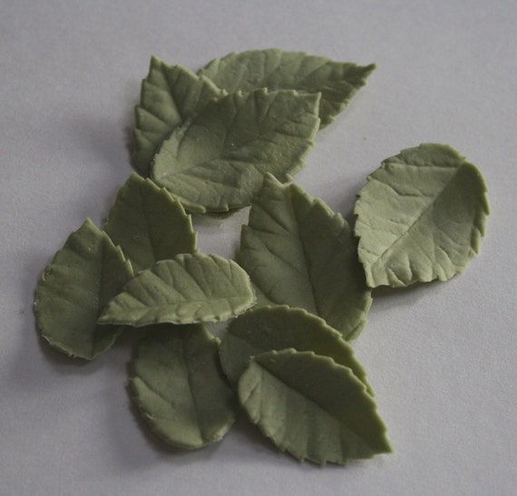 Cake Decorating Leaves : Gumpaste rose leaves for cake decorating by ACakeToRemember