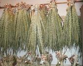Sweetgrass Braids - Bundle of 5