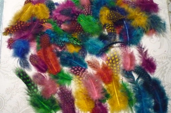 Large Bag of Guinea Bird Plumage Feathers in Vibrant Colors 3 -4 inches long
