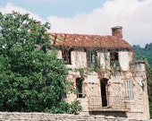 House in a Vineyard in Dijon 8X10 Color Photograph Unmatted
