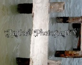 J'adore Unframed Alphabet Photograph - 'Letter I'