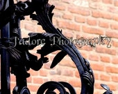 J'adore Unframed Alphabet Photograph - 'Letter S'
