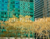 8x10/8x12 Photograph - 'Urban Winter' - Bryant Park, New York City