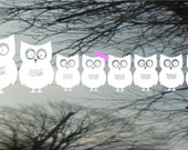 Owl Family Vinyl Car Window Decal - 4h x 16w - Set of 8 owls...PaPa, MaMa, and 6 little ones - really cute family FREE pink bows