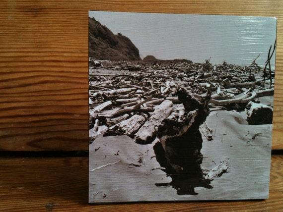 "Neskowin Driftwood Photo Block 4"" X 4"""