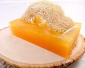 Loofah Soap, Kumquat Soap with Loofah, Exfoliating Soap