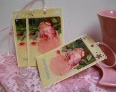 Cottage Chic Postcard Gift Tags - Set of 3 - Large -Pink Rose in River - Vintage Images