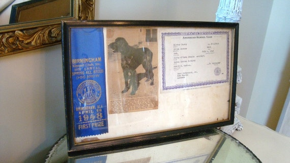 Vintage Dog Show Ribbon Trophy Prize Award Irish Setter Kennel Club 1948 First Prize Birmingham Alabama