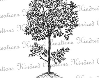Tree with Roots 300 dpi Digital Image Download Transfer For T Shirts Totes Napkins 001