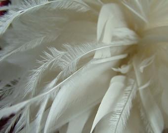 Feathered wedding hairpiece headband tiara veil wedding veil