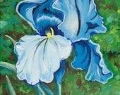 Blue Iris - Original Painting Flower