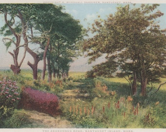 The Abandoned Road, Nantucket postcard. Gardiner, PHOSTINT