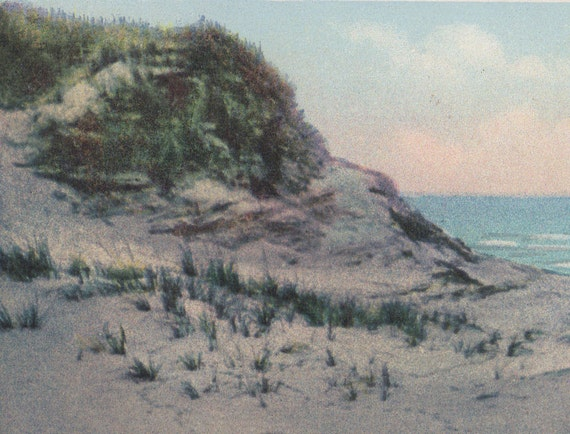 Where the sea birds nest nantucket postcard gardiner for Nantucket by the sea