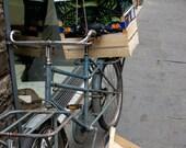 BOGO - Italian Delivery Bike - 5x7 print
