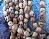 Carved Bone Skull beads - 10x11 mm strand of 36