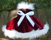 Christmas Holiday Burgundy Velvet Fur Dog Dress