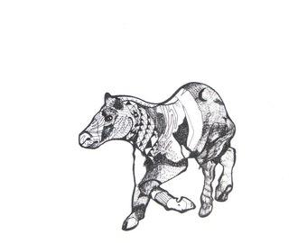 "Quagga Print, Horse in Black and White - Illustration Art - 8"" x 10"" Black and White Print"