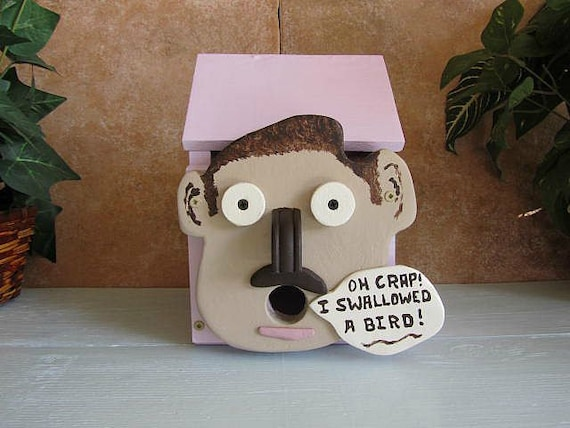novelty bird house funny face rose colored by woodcraftingshop