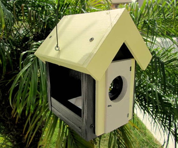 Bumble bee bird feeder yellow black bird house style for Bird house styles