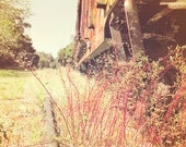 Wild Grass Grows Train Track Flowers Vintage Style Reds Browns Dreamy Travel Photography Art 11x14