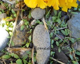 Alphabet Letter i Photograph Digital Stones and Sprouts Instant Download 5 Photographs