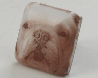French bulldog  knob - Fused glass