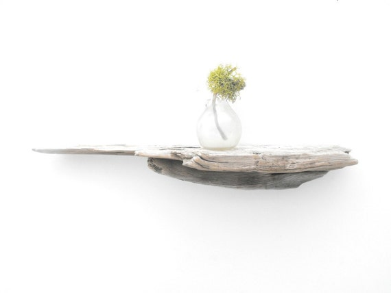 Driftwood Shelf No. 75