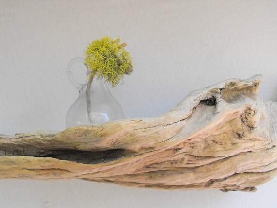 Driftwood Shelf No. 79